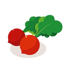 icon vegitable vector image vector image