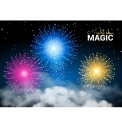 Festive brightly colorful shiny firework on dark vector