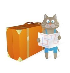Cartoon cat traveling at vacations vector