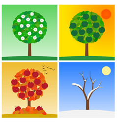 four season of year spring summer autumn winter vector image