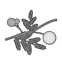 Yellow mimosa flower icon in monochrome style vector