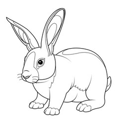 Rabbit coloring page vector