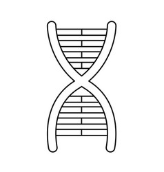 Dna molecule chromosome biology genetic line vector