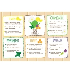 Home remedies infographics natural healers vector