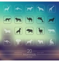 Set of mammals icons vector image