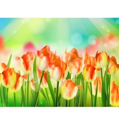 Tulips garden with grass on blue sky EPS 10 vector image