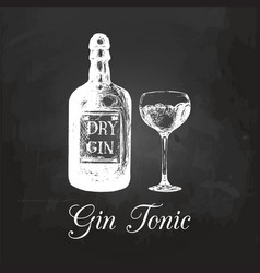 Hand sketched gin bottle and tonic glass vector