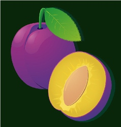 Image of a ripe juicy plum slices on stripe vector
