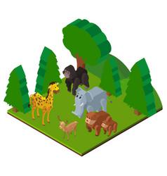 Wild animals in forest in 3d design vector