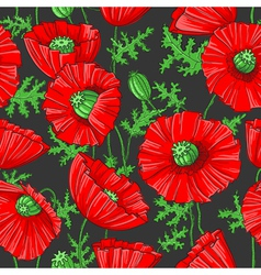 Pattern with poppies vector