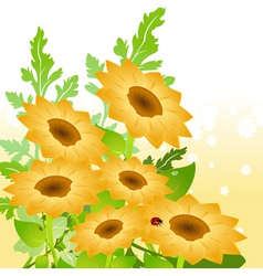 yellow sunflowers vector image