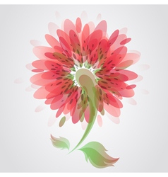 Beautiful red flower vector