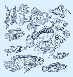 fish sketch set vector image