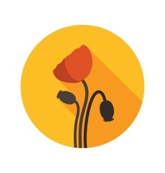 Poppy flat icon with long shadow vector image vector image