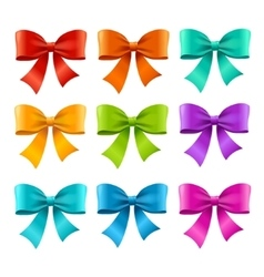 Bow ribbon colorful set vector
