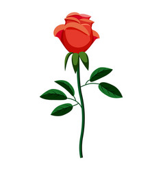 rose icon cartoon style vector image vector image
