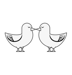 cute doves in love vector image