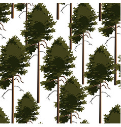 seamless pattern tree pine vector image vector image