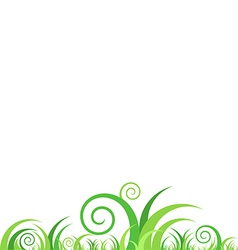Grass on white background vector