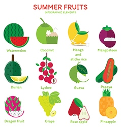 Summer fruits vector