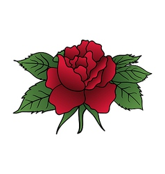 beautiful red rose isolated - vector image vector image