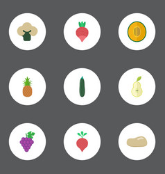 Flat icons ananas cluster salad and other vector