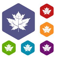 Gooseberry leaf icons set hexagon vector