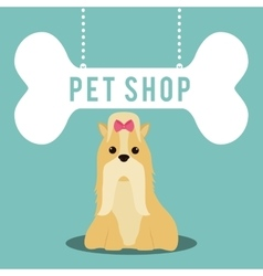 pet shop center icon vector image vector image