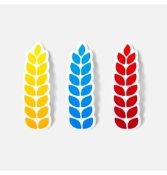 Realistic design element ears of wheat vector