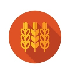 Spikelets of wheat flat icon with long shadow vector