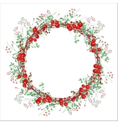 Round frame with red berries on white vector