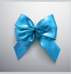blue bow and ribbons vector image vector image