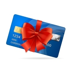 Credit card present vector