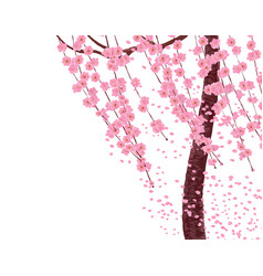 branches with pink flowers and cherry buds the vector image vector image
