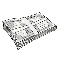bundle of money vector image vector image