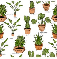 color houseplants pattern vector image