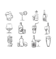 doodle sketch cocktails and alcohol drinks in vector image vector image