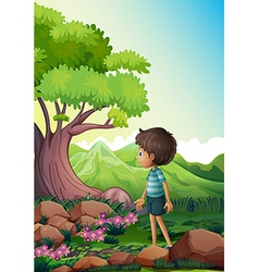 A boy near the giant tree in the forest vector