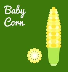 baby corn vector image