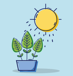 Linear leaves plant with sun weather vector