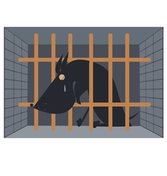 Sad dog in a cage vector image