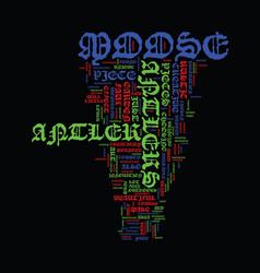 Moose antler art text background word cloud vector