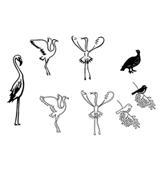 silhouettes of birds - set vector image