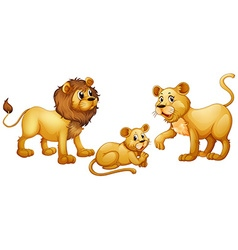 Lion family with cute little cub vector