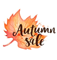 Background for seasonal autumn sale vector