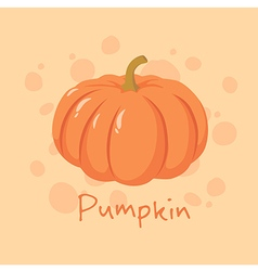 Pumpkin Vegetable vector image