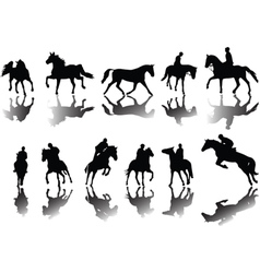 Horses and riders vector