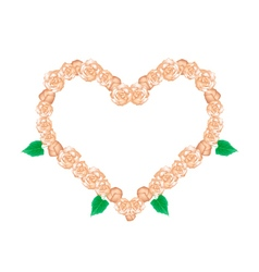 Orange glory bower flowers in heart shape vector