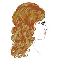 Curly hairstyle vector