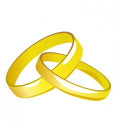 two gold wedding rings vector image